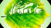 Çevresel İç Tetkik