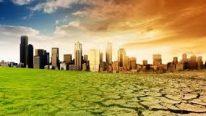 Çevresel Saha Gözlem Raporu